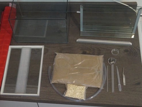 starter kit ant farm